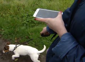 Mensch, Hund und ...Smartphone.